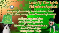 March Adoption Flyer