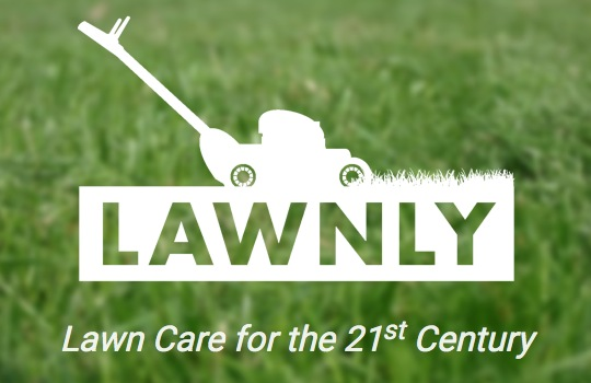 ad lawnly gets fresh with leaf removal