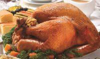 turkey-flyer