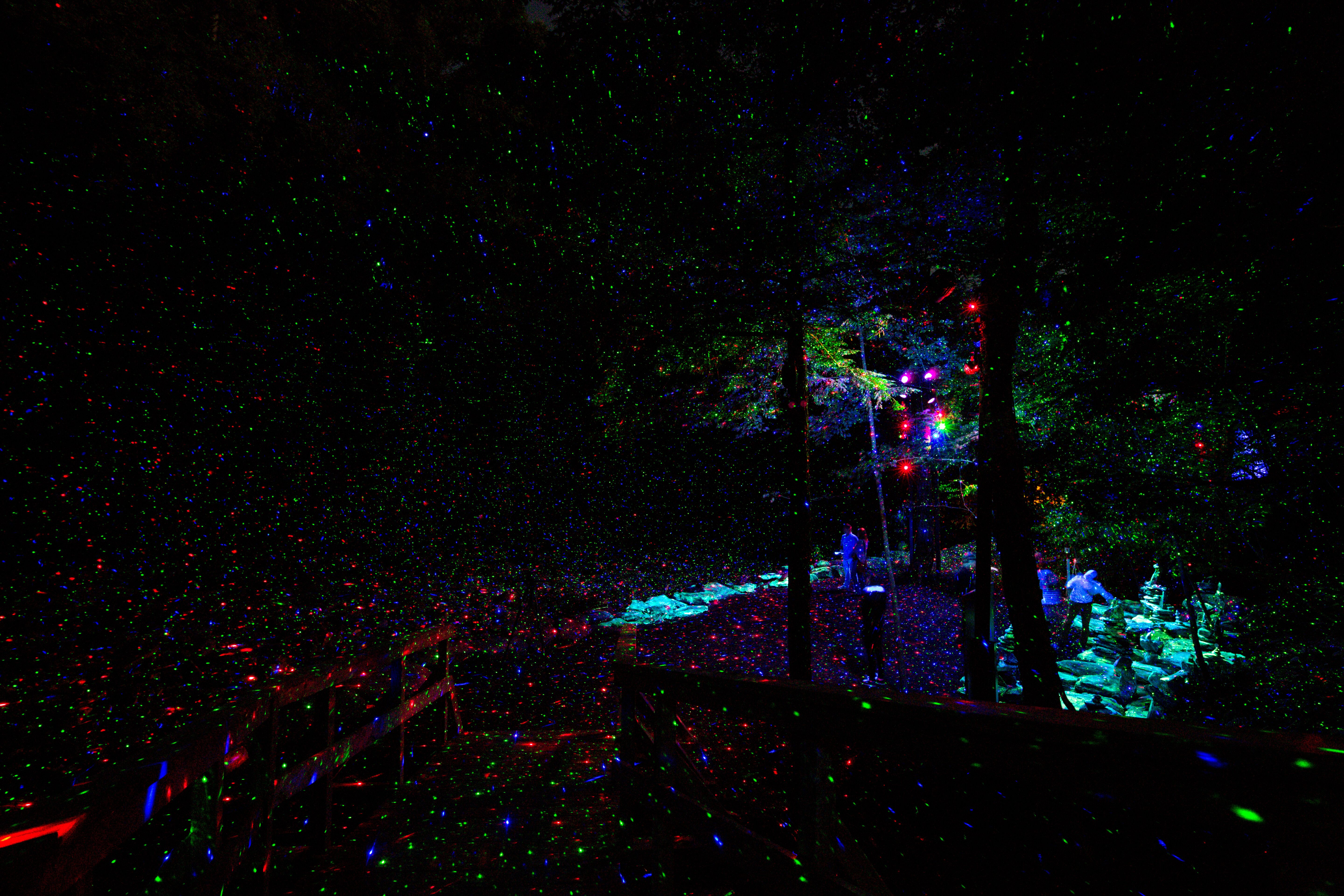 New Works Crystals In Art North Forest Lights And An